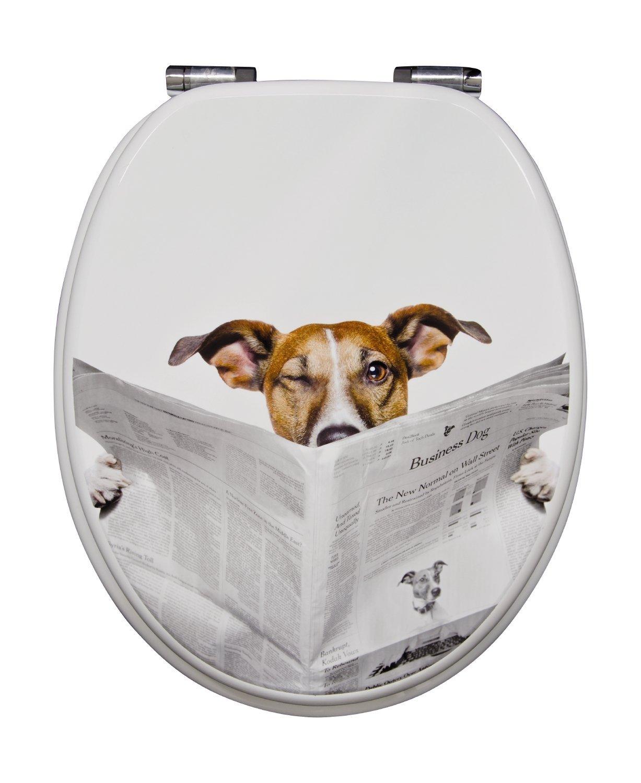 Lustiger WC Deckel: Lesender Hund